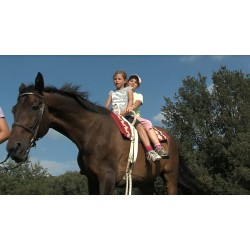 ČR - zvířata - děti - jízda na koni