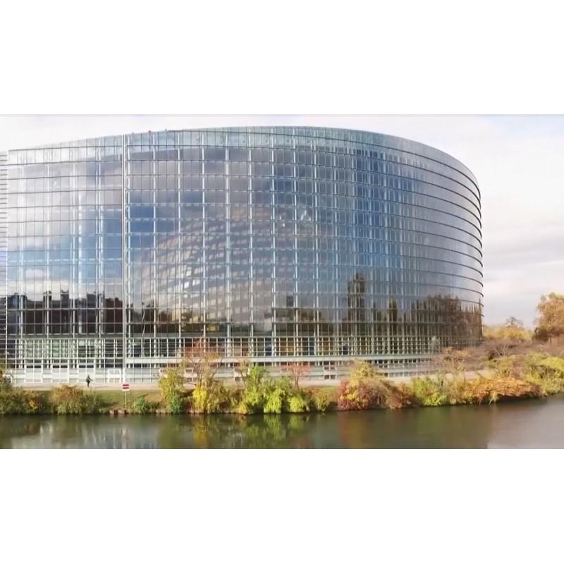 France - Great Britain - Strasbourg - European Parliament - Cameron - Merkel - Hollande