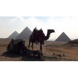 Egypt - Gíza - pyramidy - sfinga - historie
