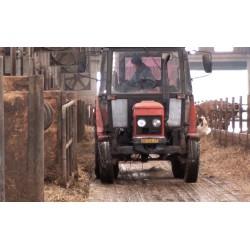 ČR - zemědělství - zvířata - krmení - kráva - seno - sláma - podestýlka