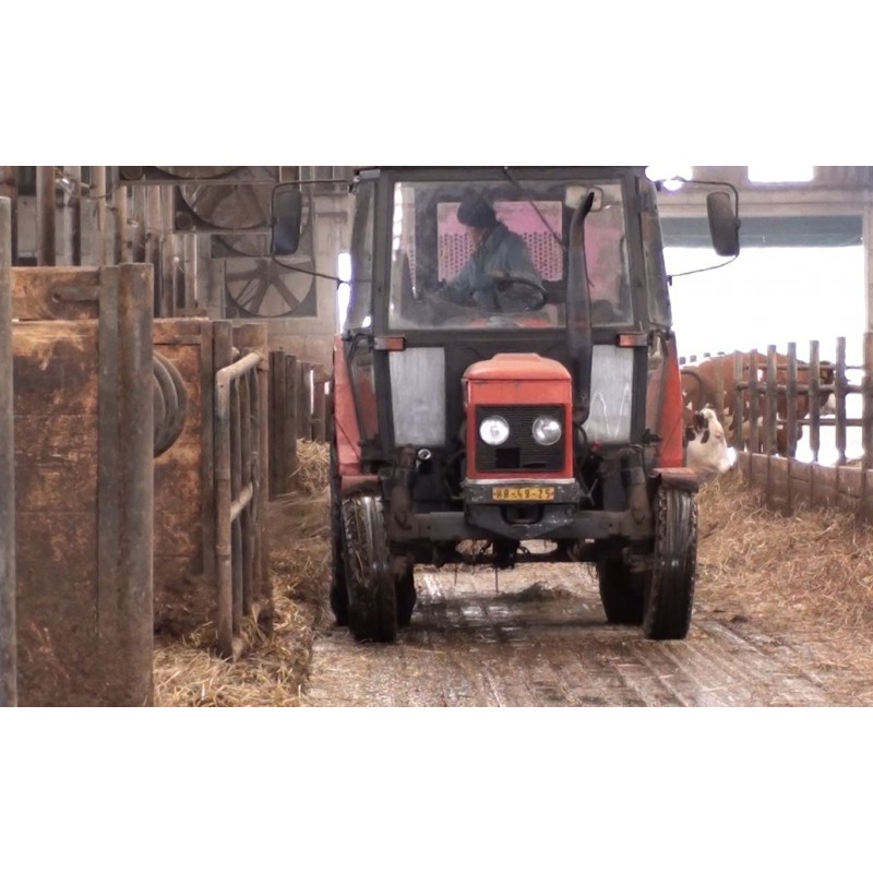 CR - agriculture - animals - feed - cow - hay - straw - bedding