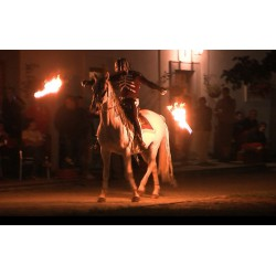 CR - animals - entertainment - horses - fire show - fire - viewers