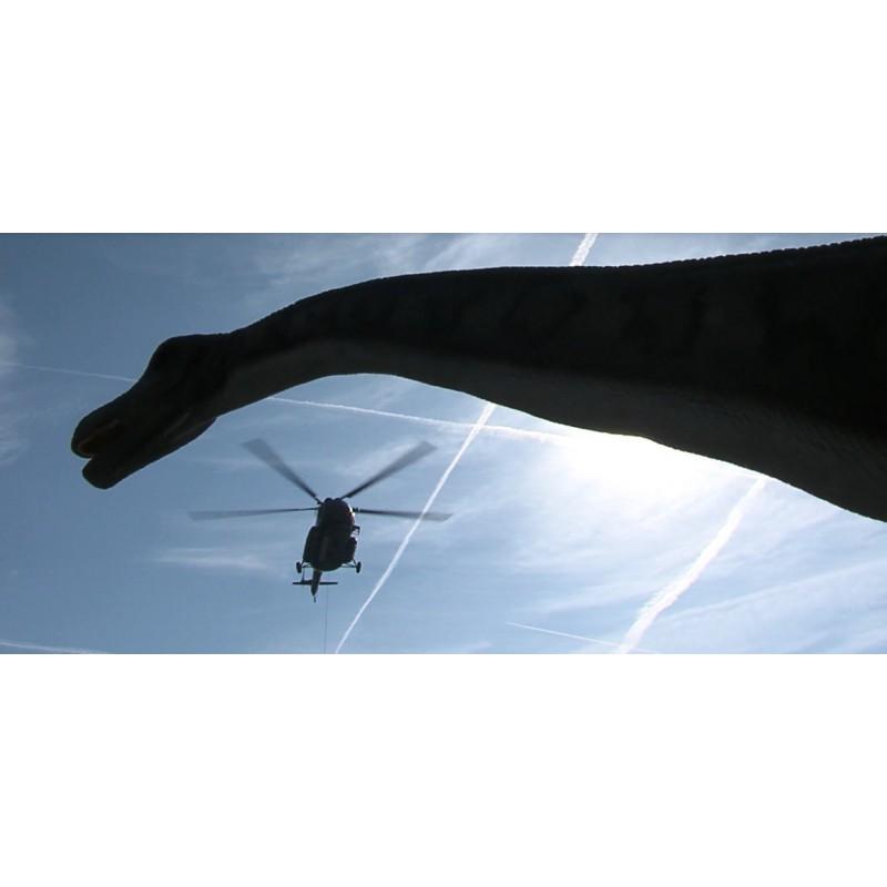 CR - Prague - Helicopter - Material Transportation - Dinosaurs