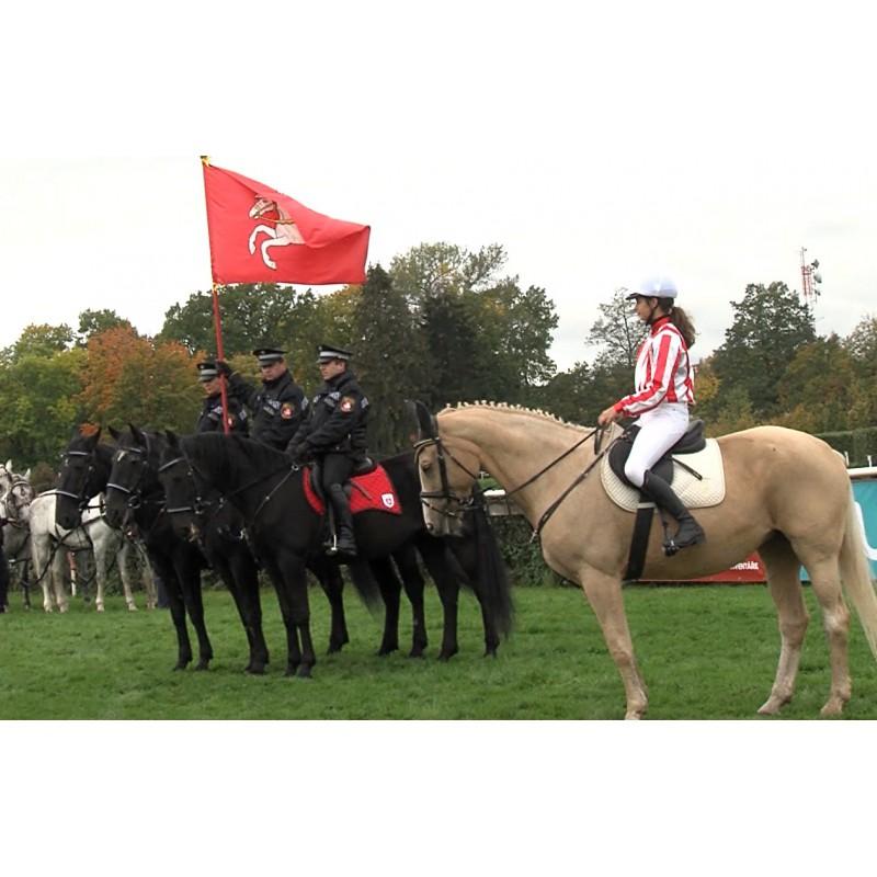 NEWS - CR - Velká Pardubická - Jan Kratochvíl - horse race - horses - hats - fashion