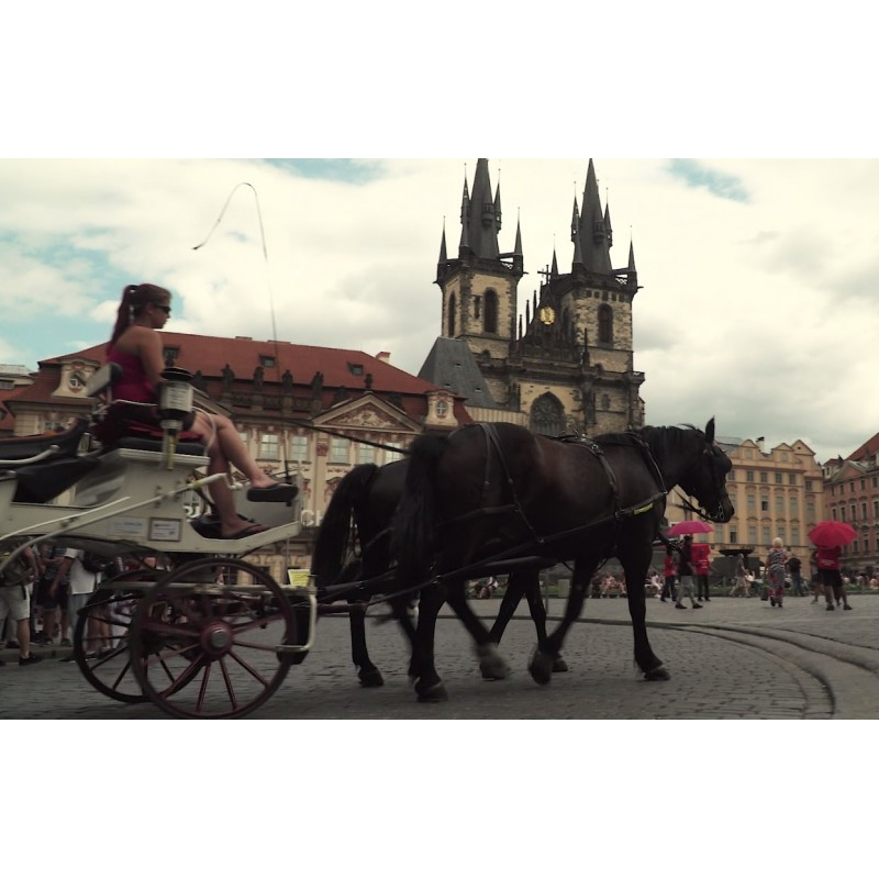 CR - Prague - city - Old time square - carriage - horses - Karlín