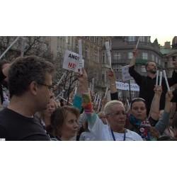 ČR - Praha - Václavské náměstí - demonstrace - Babiš - ANO - vláda - demise