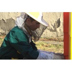CR - education - apprentice - gardener - fruit grower - greenhouse - beekeeper - bee