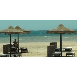 Egypt - pláže - slunečníky