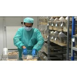 Germany - animals - animal testing - scientists - laboratories
