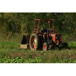 France - fields - tractor - vegetables - harvest