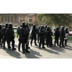 ČR - Brno - Romové - protesty - neonacisté