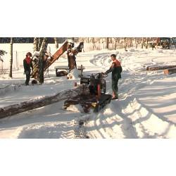 ČR - Vysočina - těžba dřeva - zpracování dřeva