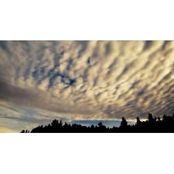 ČR - noční obloha - stmívání - svítání - časosběr 30000x zrychleno