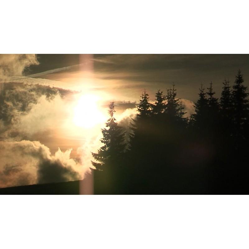 CR - nature - forest - sky - time-lapse - 1 - original length