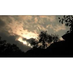 ČR - příroda - obloha - mraky - 10000 zrychleno